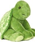 Cuddliest Turtle