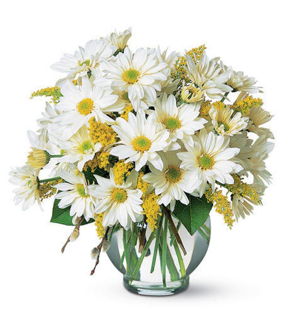 Simple Pleasures Sweet Pretty Same Day Louisville Ky Flower