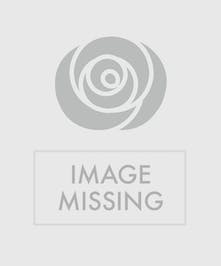 Blooming Plants in a basket