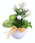 Golf Ball Planter