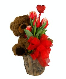 Teddy Loves Tulips~ plant with bear