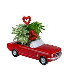 Valentine Joy Ride Planter