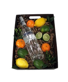 Citrus and Vodka
