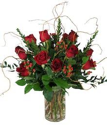 Premium Dozen Long Stem Roses