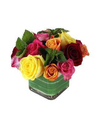 Louisville Birthday Flowers Gifts W Same Day Delivery
