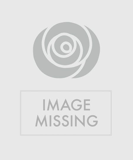 Romantic Flowers & Bouquets