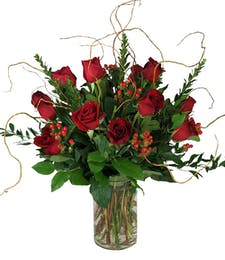 Premium Dozen Long Stem Roses