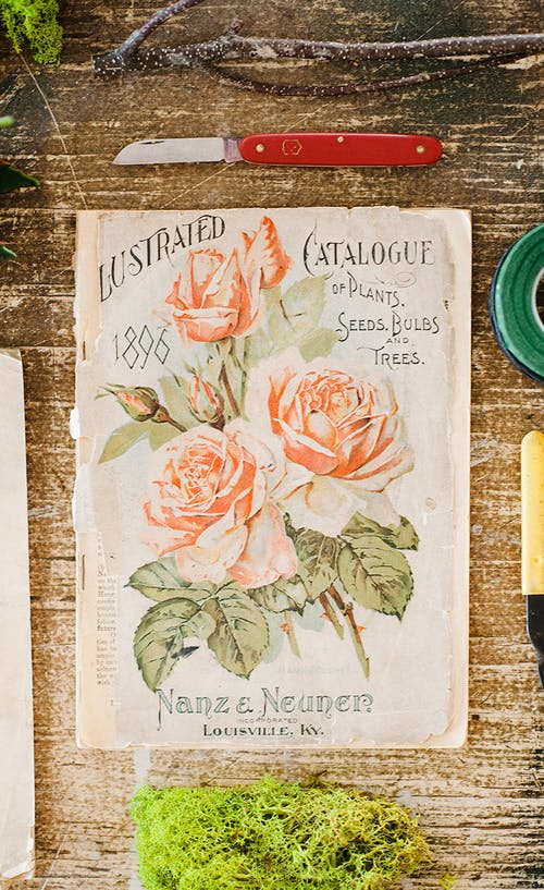 A vintage catalog from Nanz and Neuner Florist, printed in the year 1896