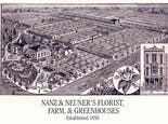 An illustration depicting the Nanz and Neuner farm and greenhouses